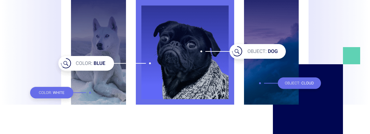 Uncover Content Trends With a Powerful AI Image Recognition Software