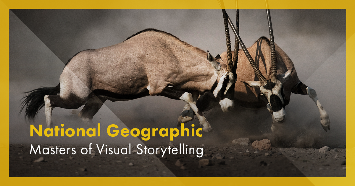 National Geographic's Strategies for Great Content