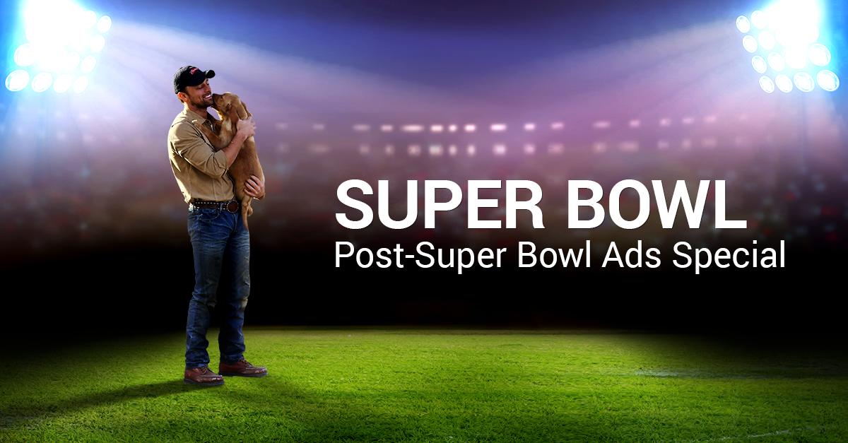 Budweiser Clearly Wins as This Year's Big Game Advertiser