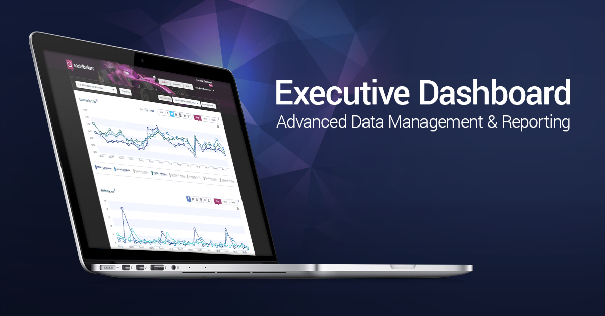 Advanced Data Management with the Socialbakers Executive Dashboard