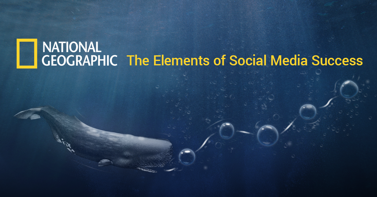 National Geographic's Social Media Success in 2014