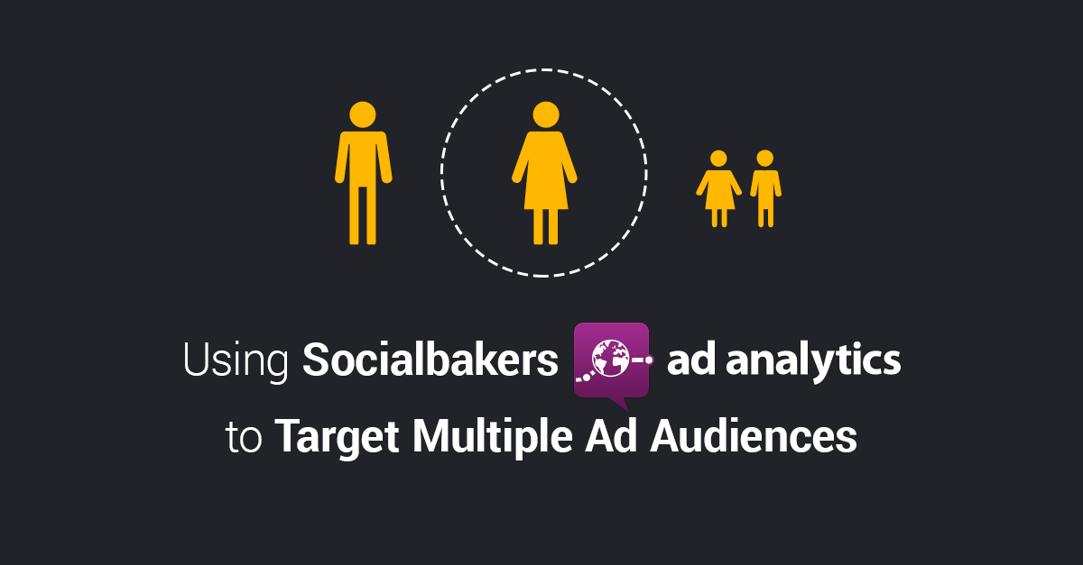 Using Socialbakers Ad Analytics to Target Multiple Audiences