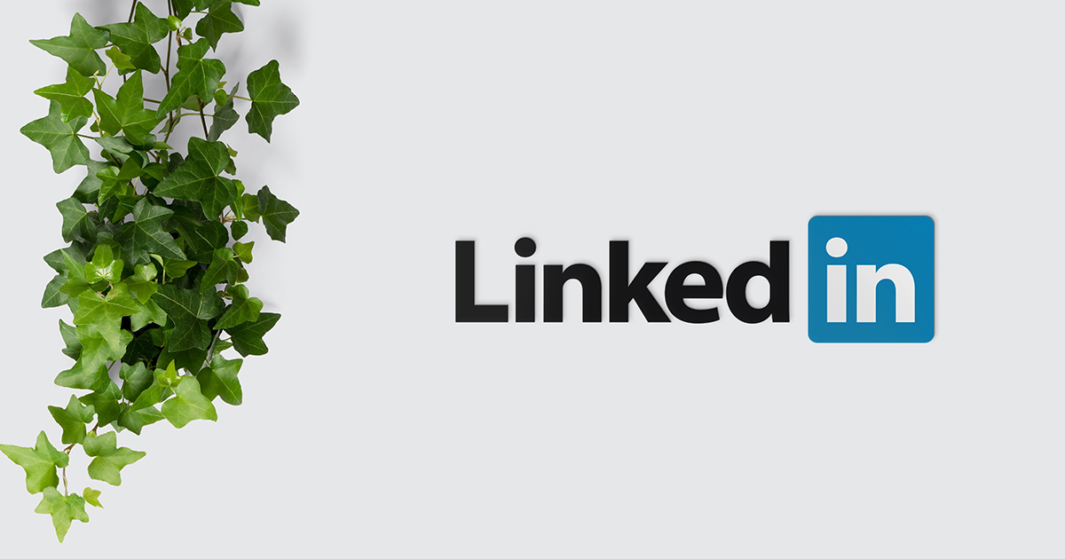 5 Steps How to Turn LinkedIn Connections Into Clients