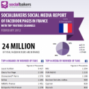 Local Social Media Statistics of Facebook & YouTube brands in France – February 2012 image