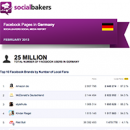 February 2013 Social Media Report: Facebook Pages in Germany image