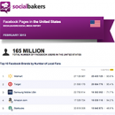 February 2013 Social Media Report: Facebook Pages in the United States image