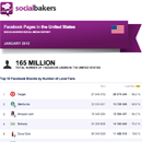 January 2013 Social Media Report: Facebook Pages in the United States - UPDATE image