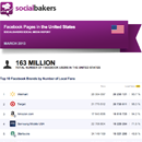 March 2013 Social Media Report: Facebook Pages in the United States image