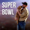 Budweiser Clearly Wins as This Year's Big Game Advertiser image